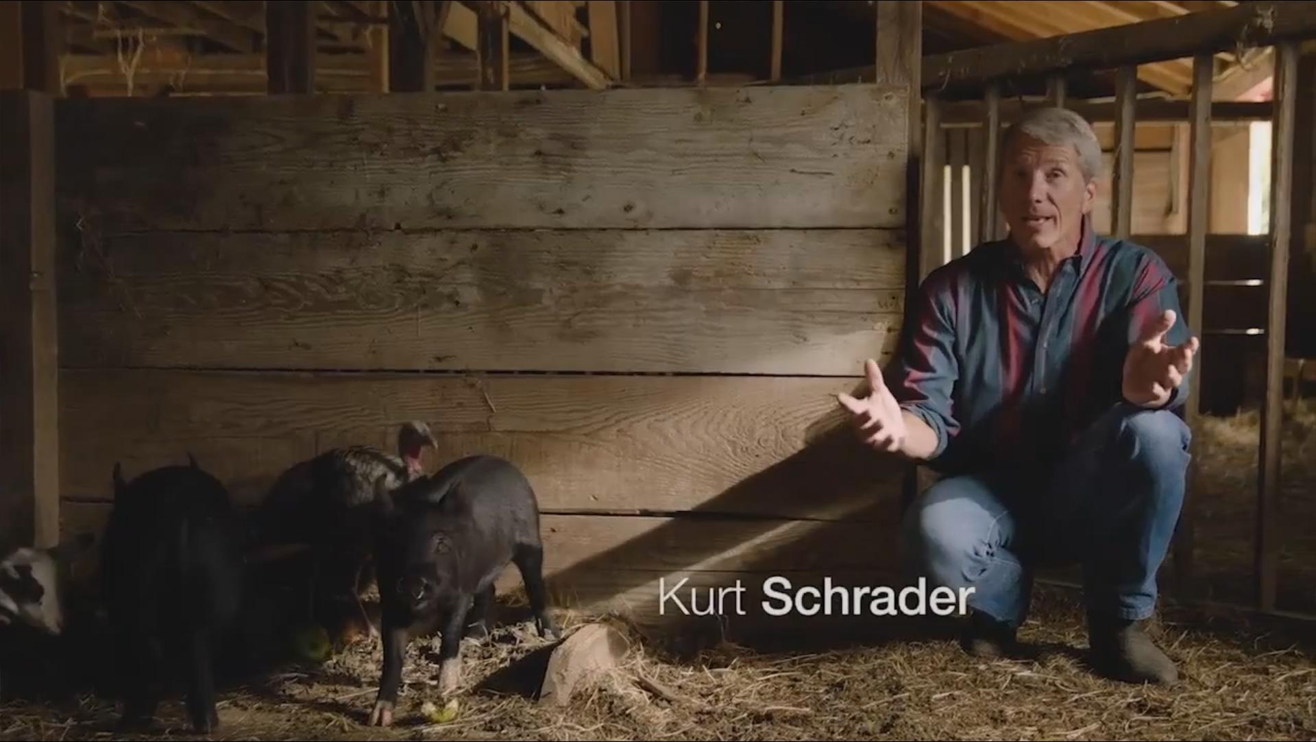 Kurt Schrader - Animals